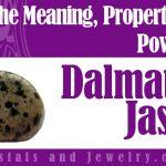 Is Dalmatian Jasper Lucky?
