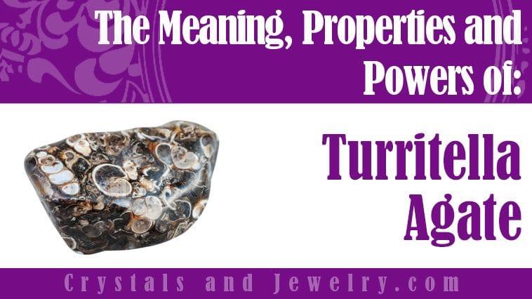 turritella agate meaning