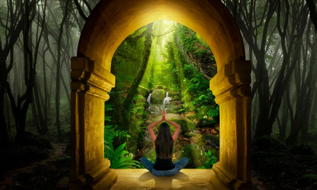 Chakra Meditation Forest